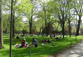 Harvard Yard: ICOT 1984